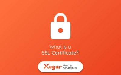 What is an SSL Certificate and Why Do I Need One?